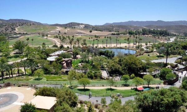 Informações sobre o San Diego Zoo Safari Park em San Diego