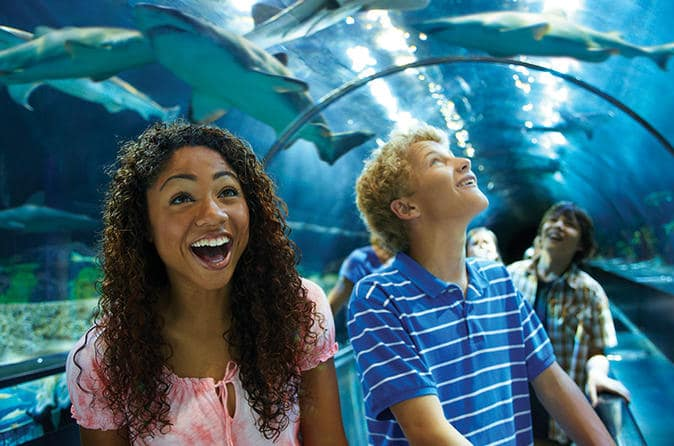 Sobre o parque SeaWorld em San Diego