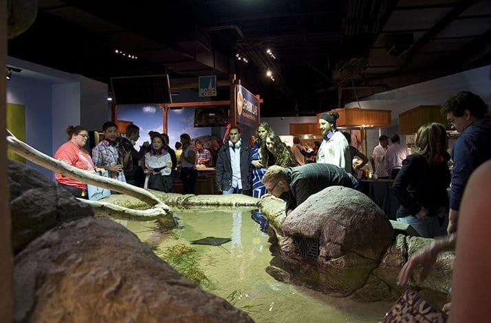 Informações sobre o Aquarium of the Bay em San Francisco
