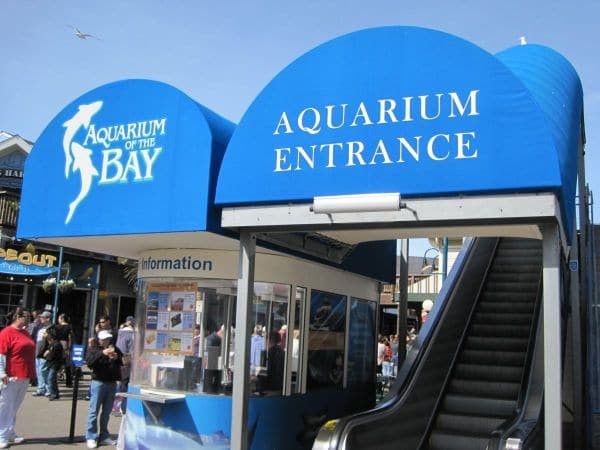 Aquarium of the Bay na Califórnia