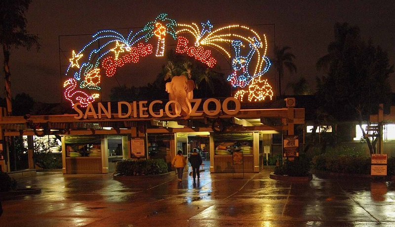 Natal no San Diego Zoo