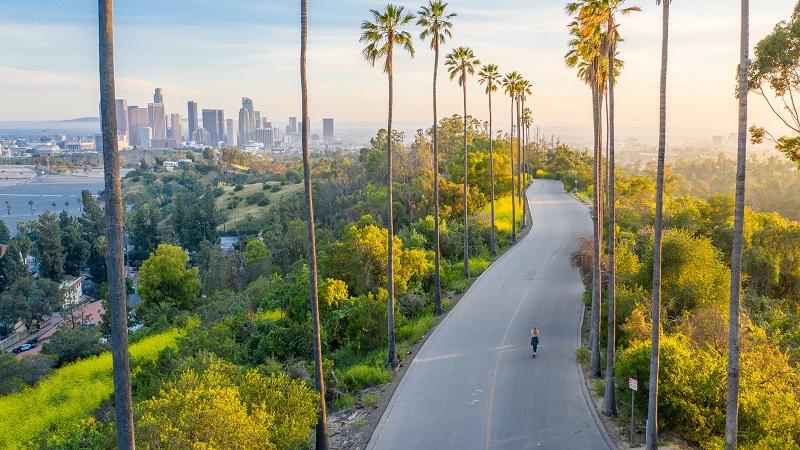 Natureza em Los Angeles