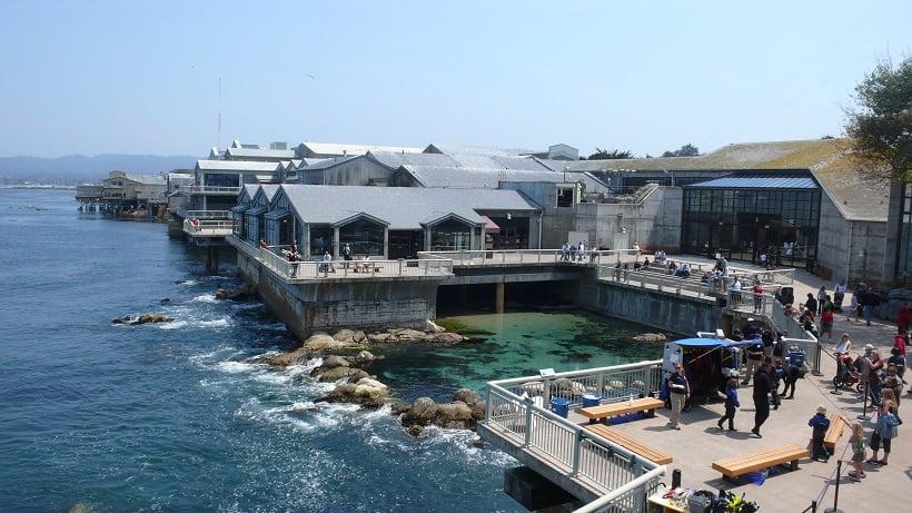 Aquário em Monterey na Califórnia