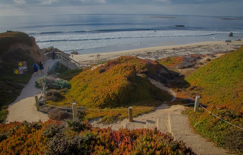 Garrapata State Park em Carmel na cidade de Monterey