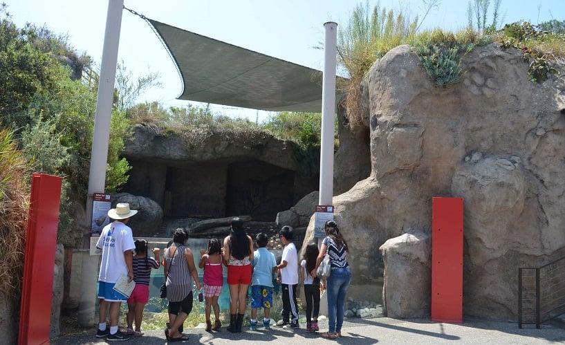 Sea Life Cliffs no Zoológico de Los Angeles