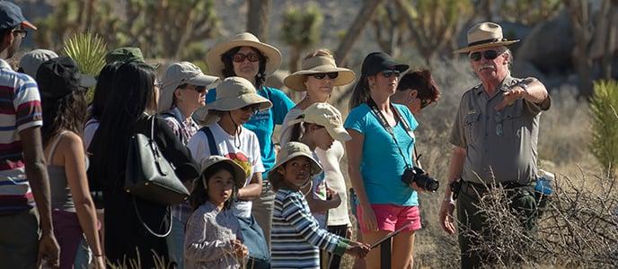 Tour pelo Parque Nacional de Joshua Tree na Califórnia