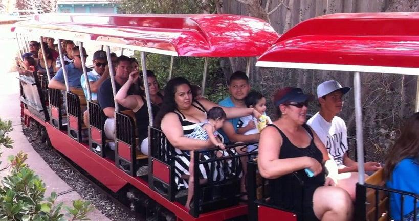 Passeio no zoológico Santa Bárbara Zoo