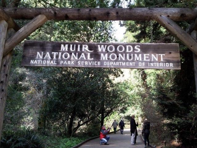 Parque Nacional de Muirwoods na Califórnia