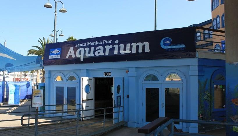 Visita ao Santa Mônica Píer Aquarium