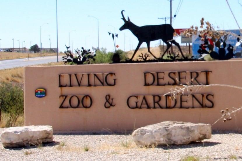 Living Desert Zoo and Gardens em Palm Springs