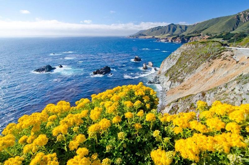 Beleza de Carmel-by-the-sea