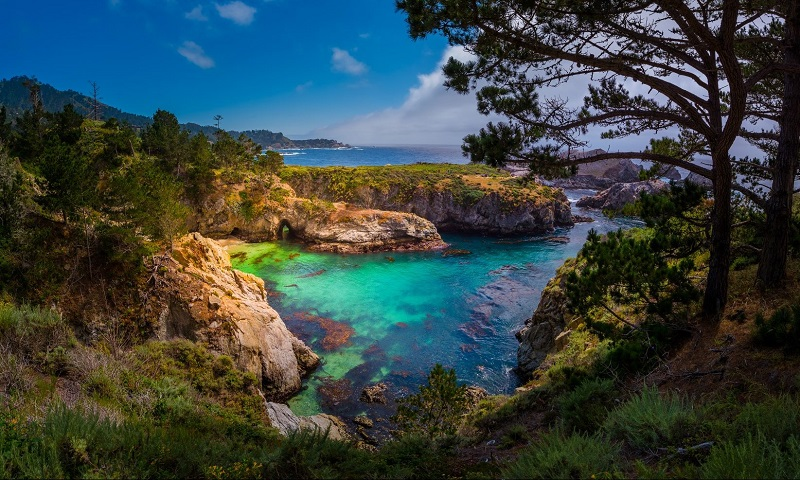Point Lobos State Natural Reserve em Carmel-by-the-Sea