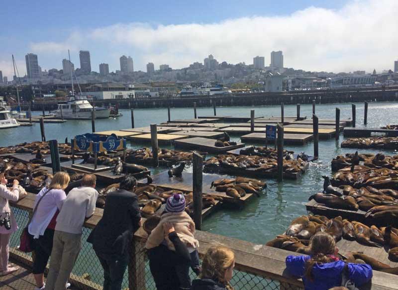 Ir com criança no Fisherman's Wharf em Monterey
