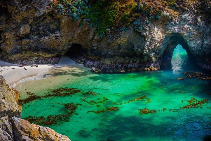 Ir com criança no Point Lobos State Natural Reserve em Carmel