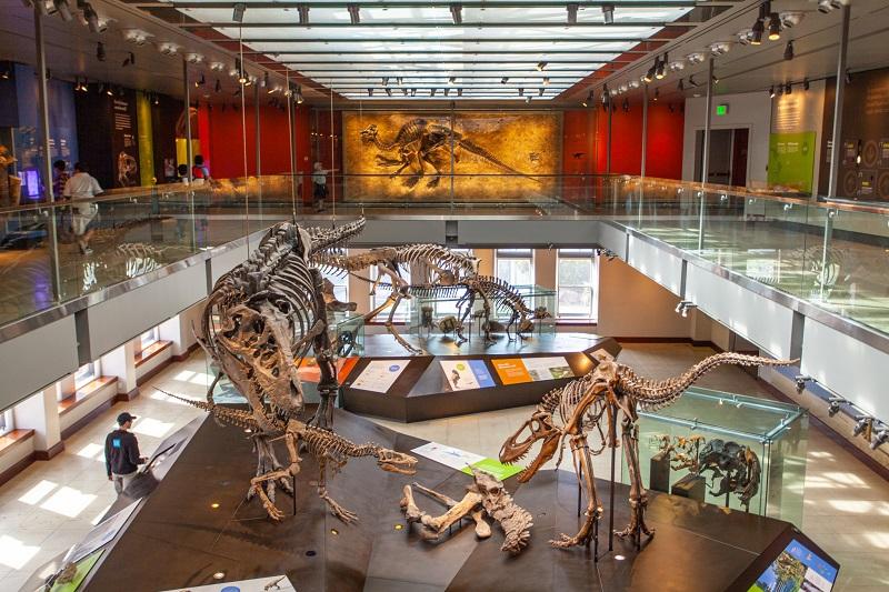 Museu em San Diego